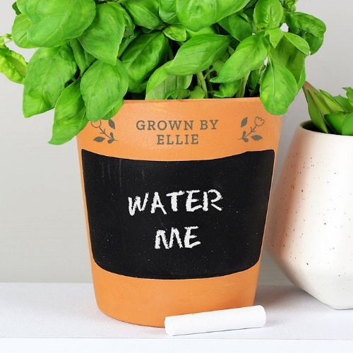 Floral Chalk Board Terracotta Planter